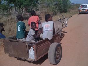 Guerriglie e Povertà nell'Africa dimenticata:  Dove si va?